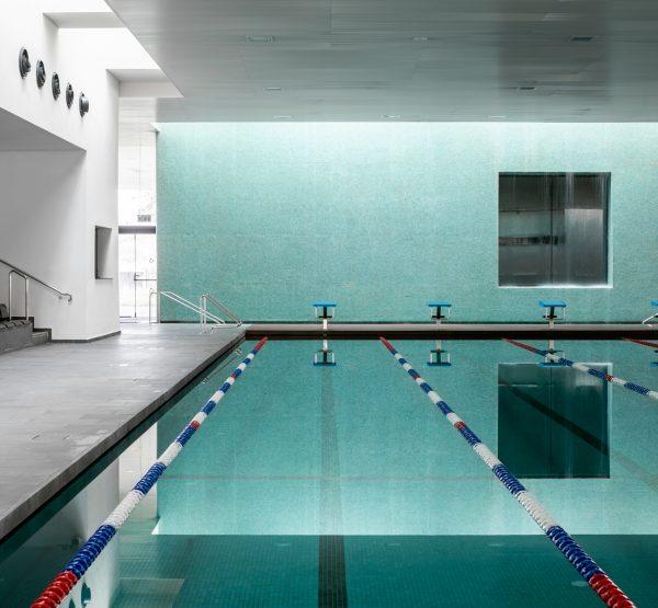 מרכז למצויינות בשחייה, ערבה